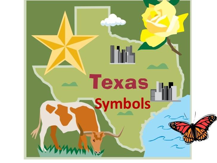 texas-symbols-1-1-728